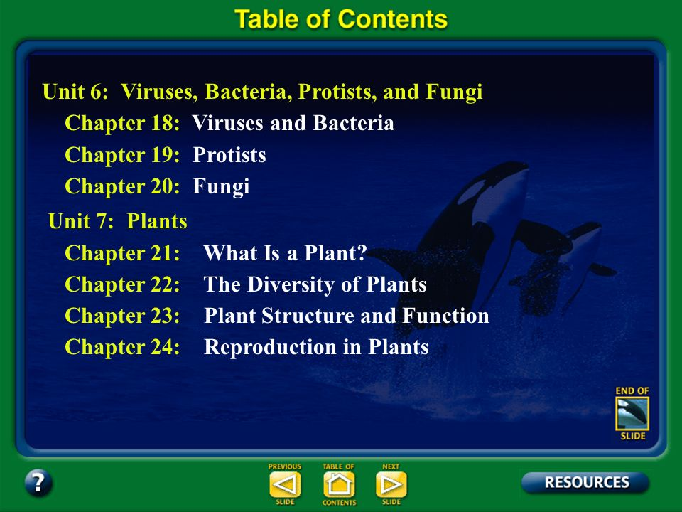 Table of Contents – pages iv-v