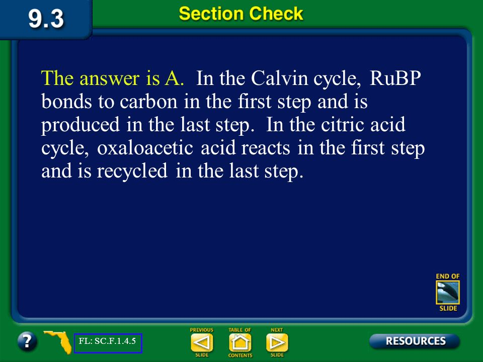 The answer is A. In the Calvin cycle, RuBP bonds to carbon in the first step and is produced in the last step. In the citric acid cycle, oxaloacetic acid reacts in the first step and is recycled in the last step.