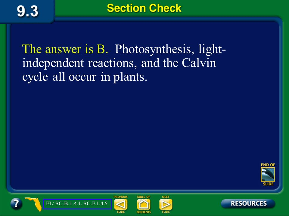 The answer is B. Photosynthesis, light-independent reactions, and the Calvin cycle all occur in plants.