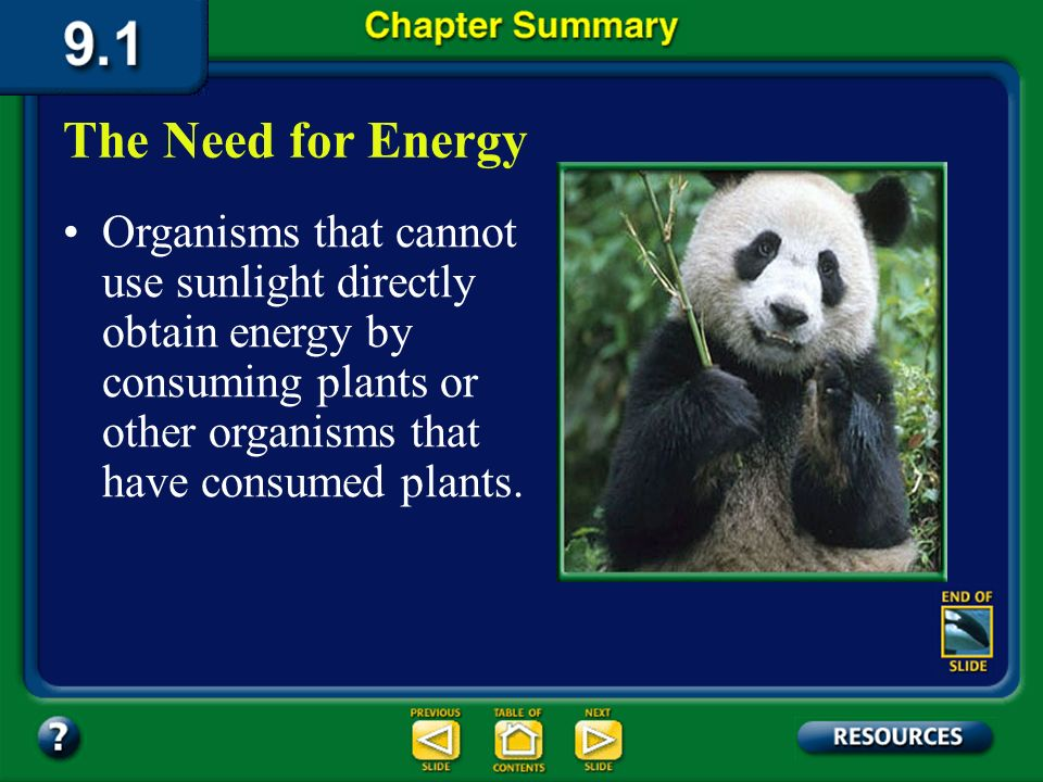 The Need for Energy Organisms that cannot use sunlight directly obtain energy by consuming plants or other organisms that have consumed plants.