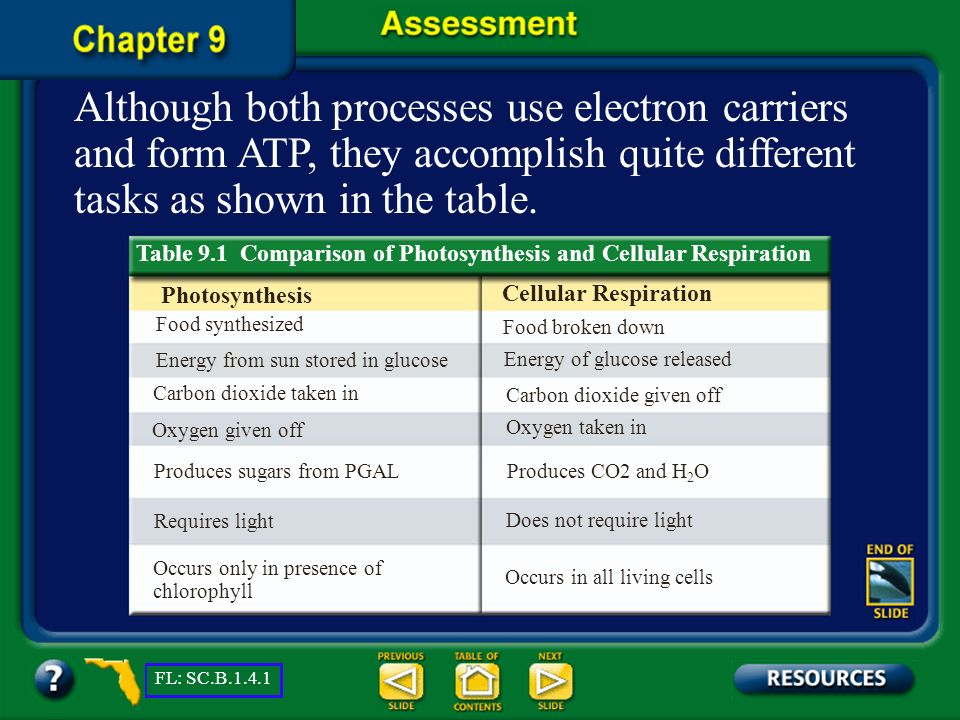 Although both processes use electron carriers and form ATP, they accomplish quite different tasks as shown in the table.