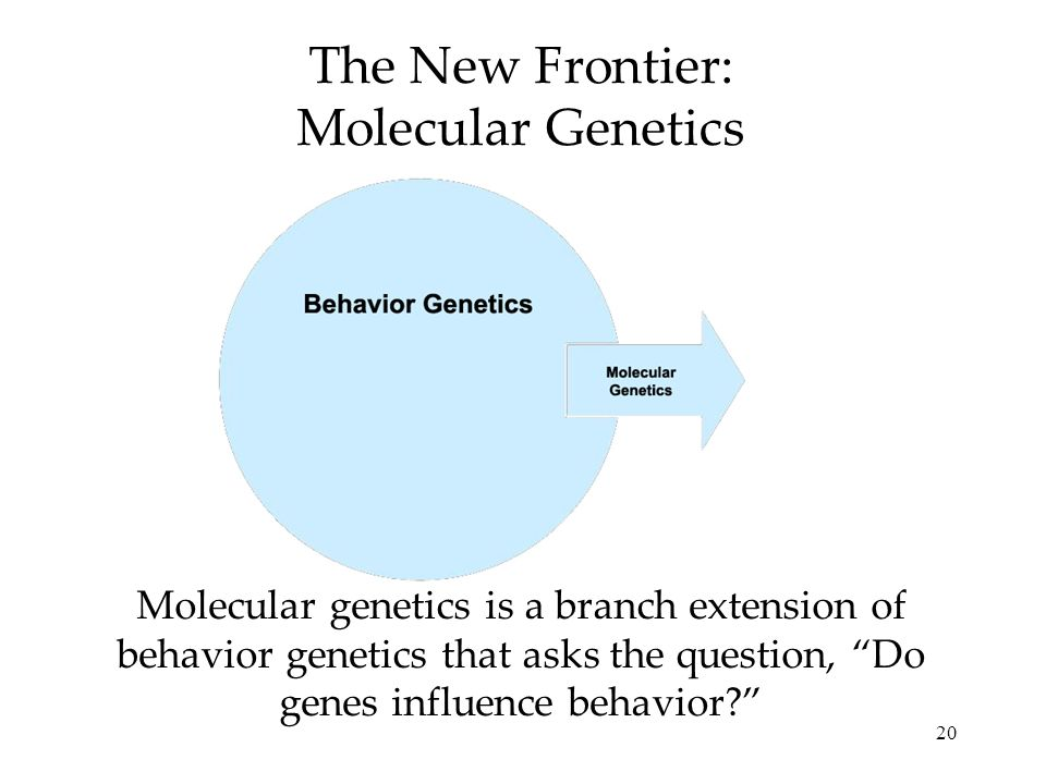 The New Frontier: Molecular Genetics