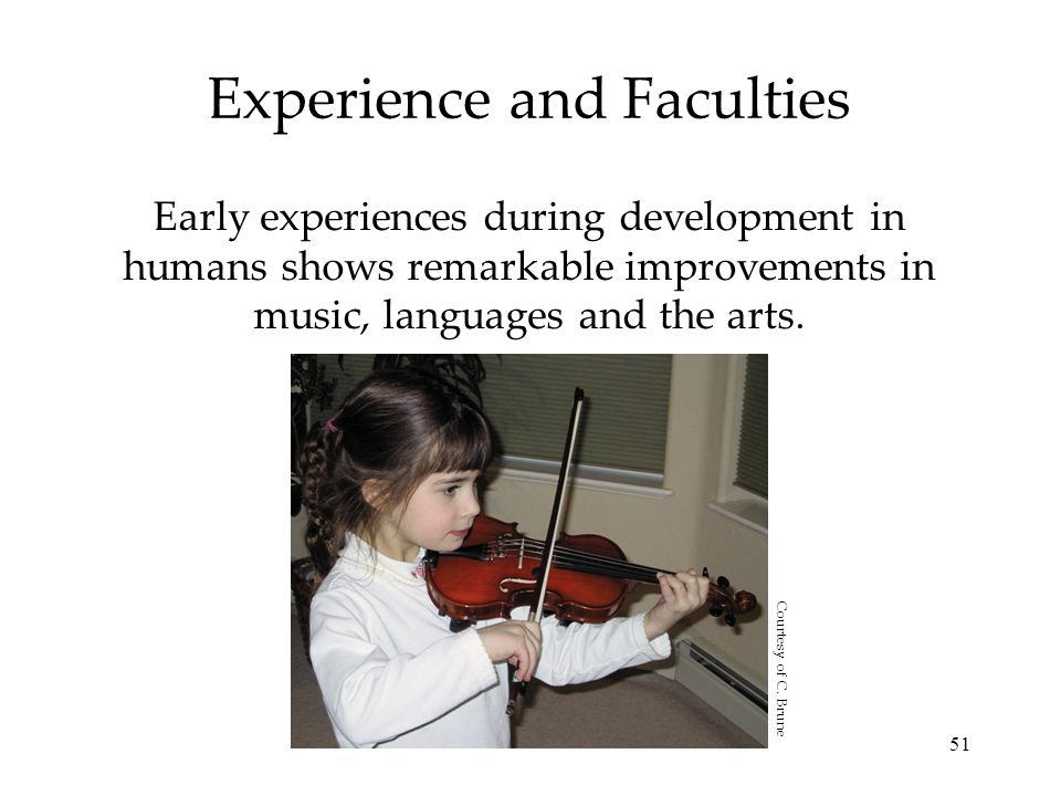 Experience and Faculties