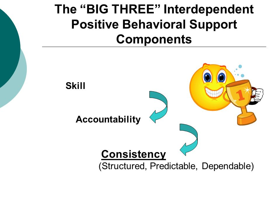The BIG THREE Interdependent Positive Behavioral Support Components