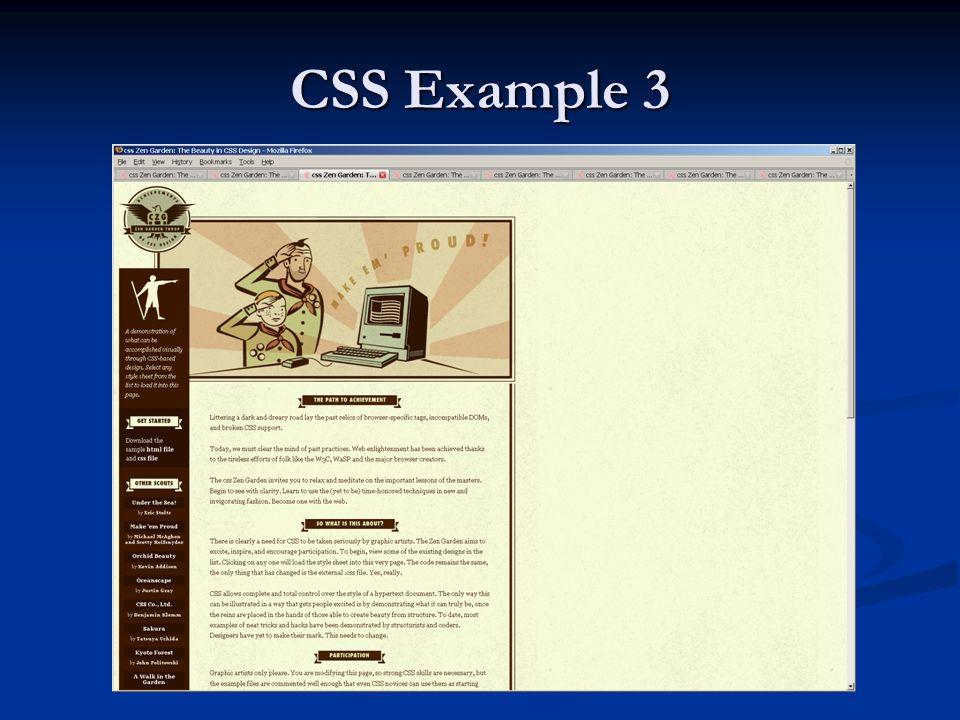 CSS Example 3