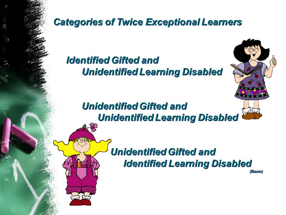Categories of Twice Exceptional Learners