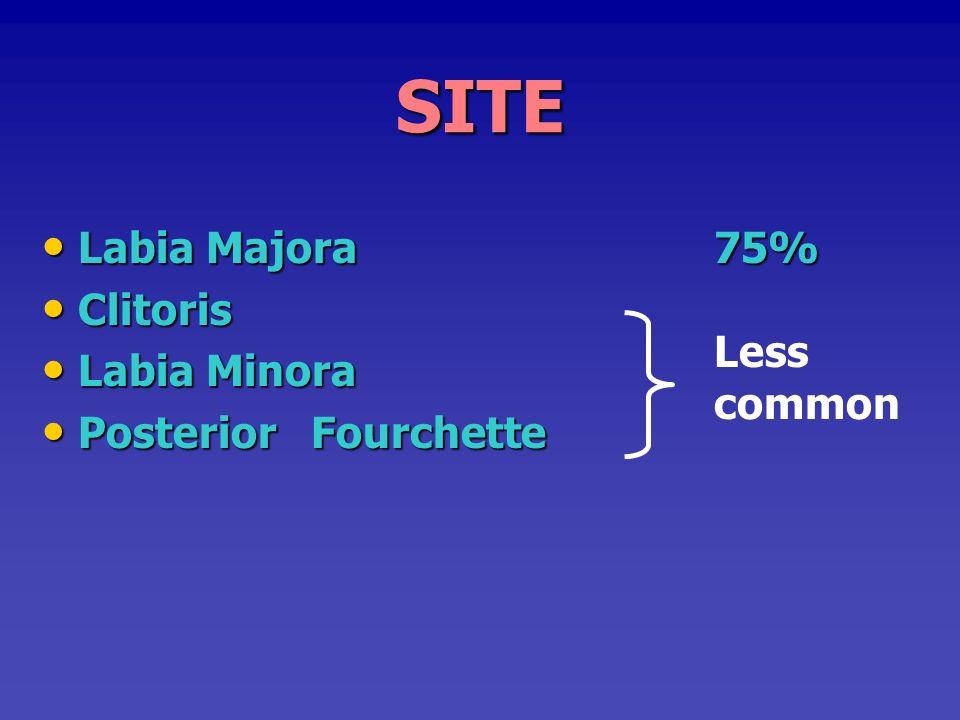 SITE Labia Majora 75% Clitoris Labia Minora Posterior Fourchette Less