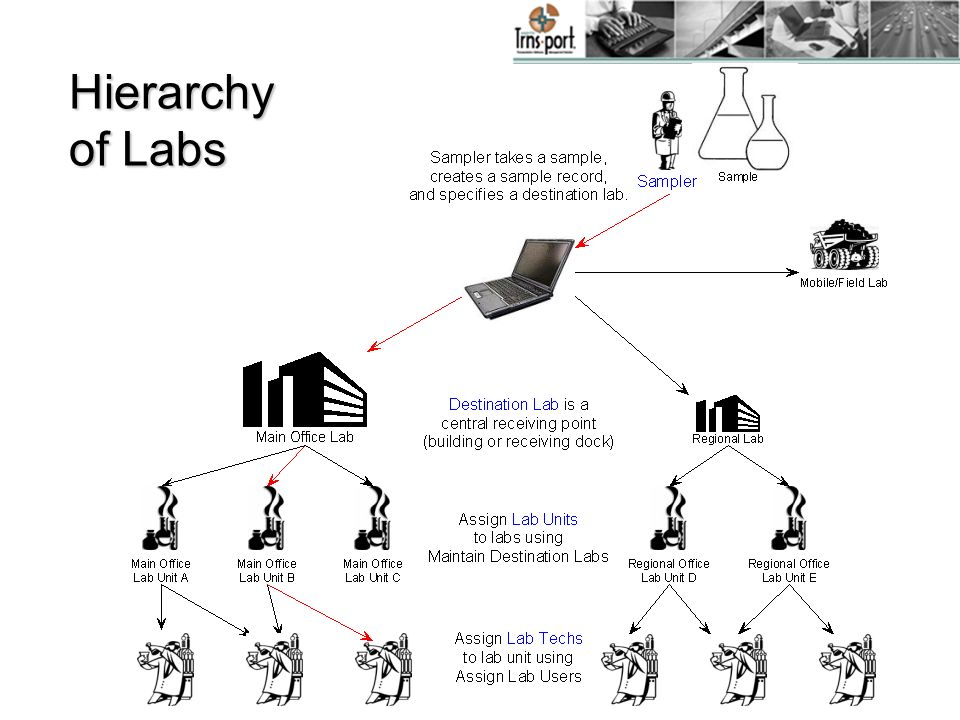 Hierarchy of Labs Note: Regional lab may also be a district lab or a residency. Mention contract authority.