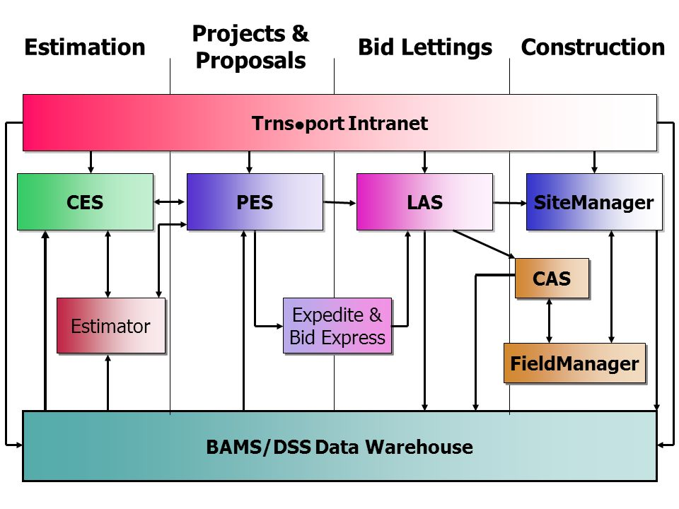 BAMS/DSS Data Warehouse
