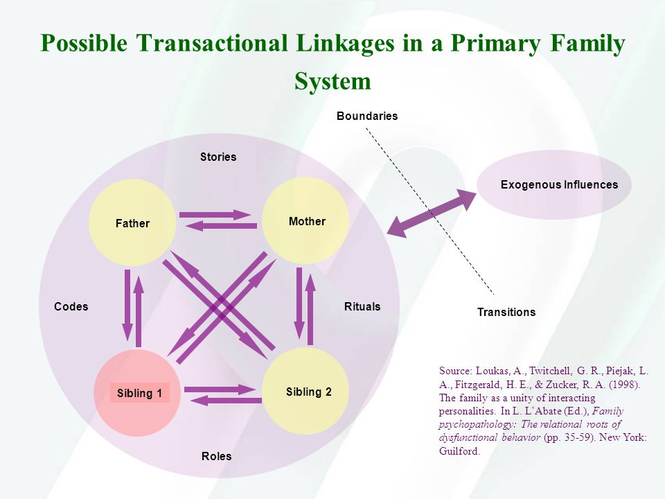 Possible Transactional Linkages in a Primary Family System