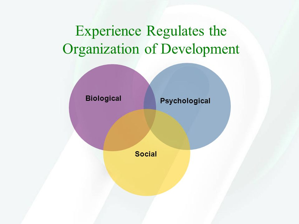 Experience Regulates the Organization of Development