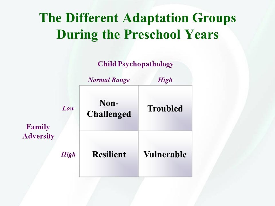 The Different Adaptation Groups During the Preschool Years
