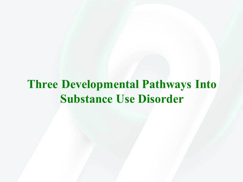 Three Developmental Pathways Into Substance Use Disorder