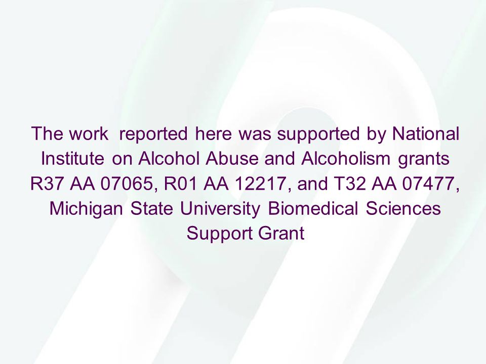 The work reported here was supported by National Institute on Alcohol Abuse and Alcoholism grants R37 AA 07065, R01 AA 12217, and T32 AA 07477, Michigan State University Biomedical Sciences Support Grant