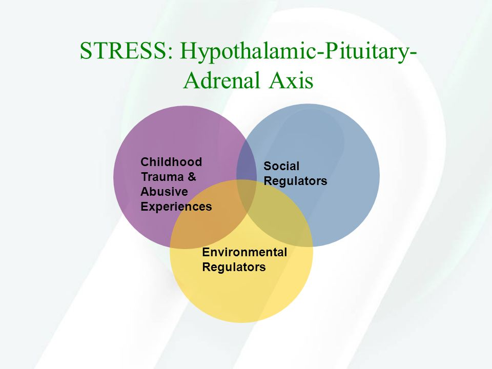STRESS: Hypothalamic-Pituitary-Adrenal Axis