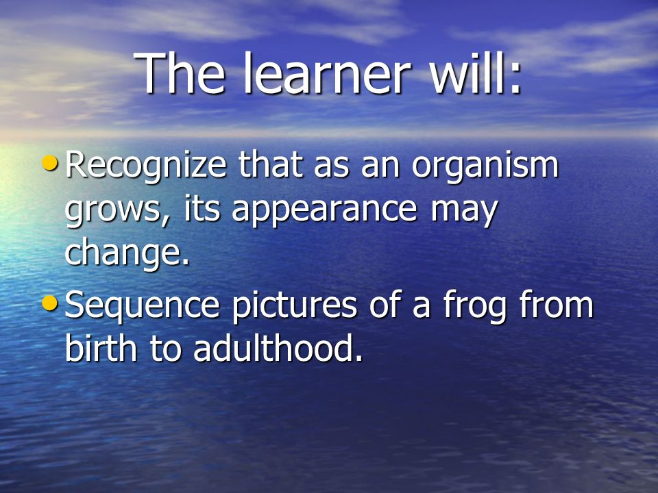 The learner will: Recognize that as an organism grows, its appearance may change.
