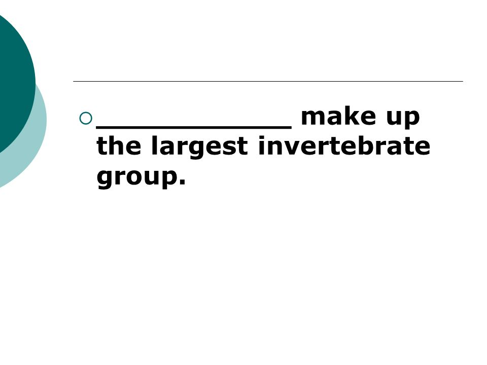 ___________ make up the largest invertebrate group.