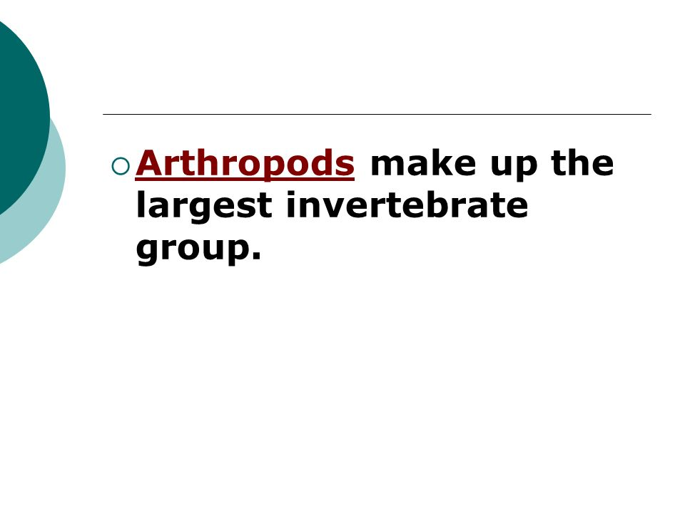 Arthropods make up the largest invertebrate group.