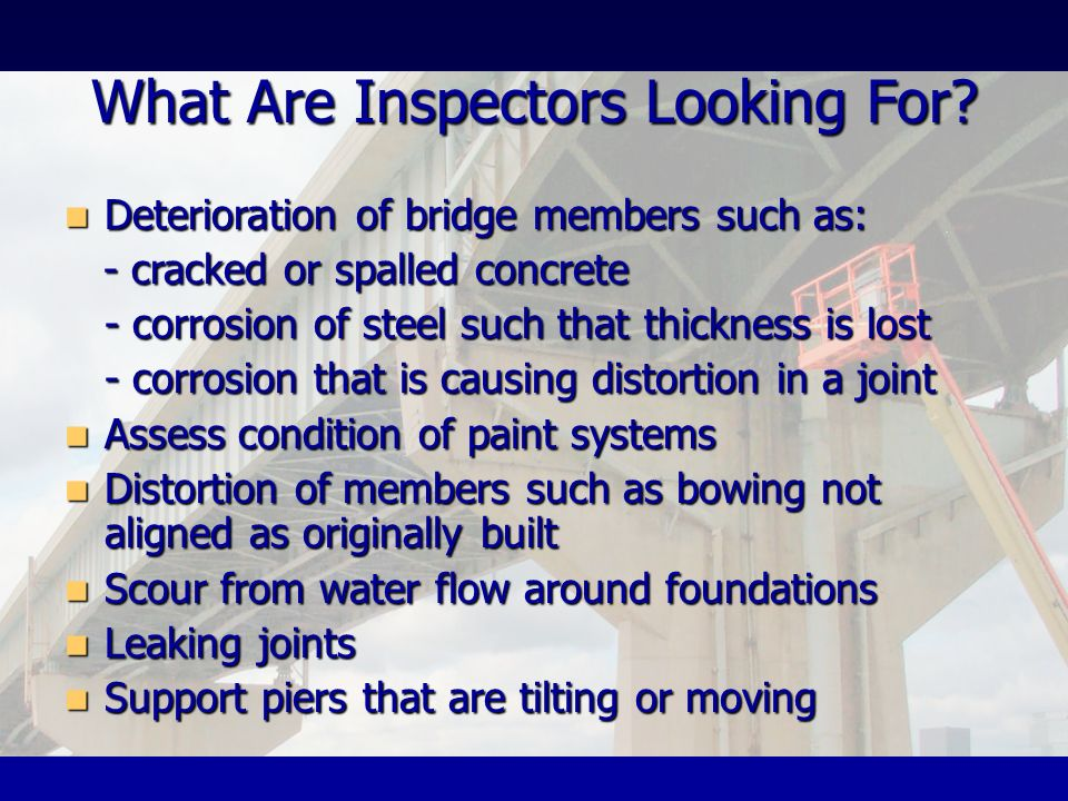 What Are Inspectors Looking For
