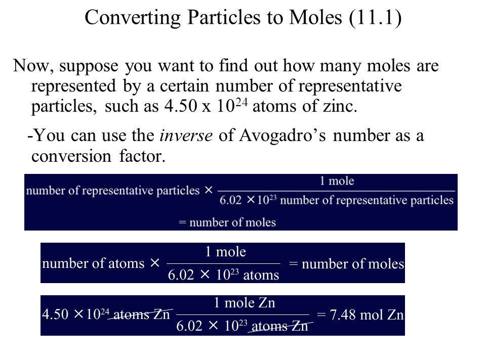 Converting Particles to Moles (11.1)