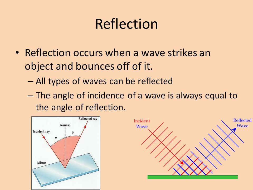 Reflection Reflection occurs when a wave strikes an object and bounces off of it. All types of waves can be reflected.