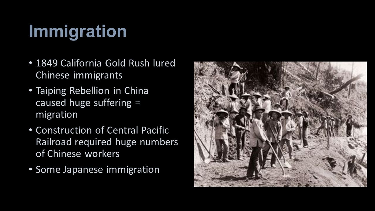 Immigration 1849 California Gold Rush lured Chinese immigrants