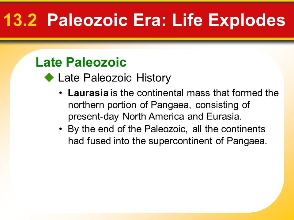 13.2 Paleozoic Era: Life Explodes