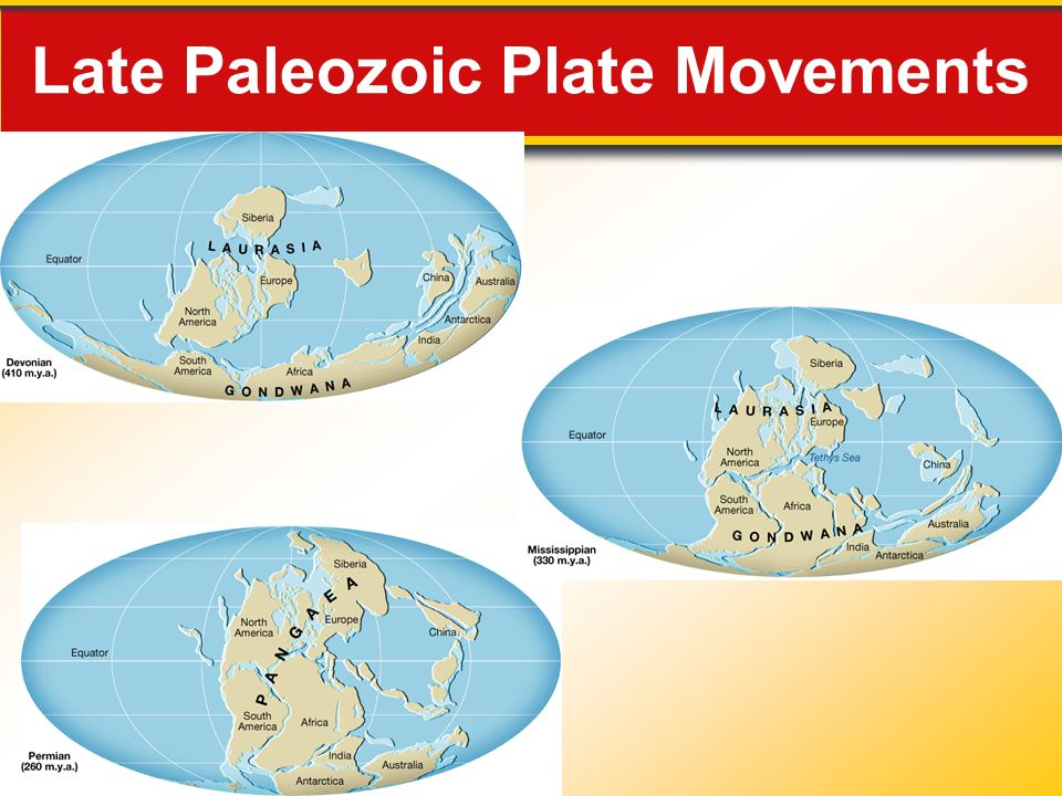 Late Paleozoic Plate Movements
