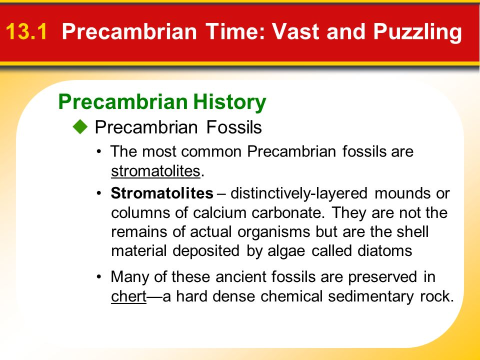 13.1 Precambrian Time: Vast and Puzzling