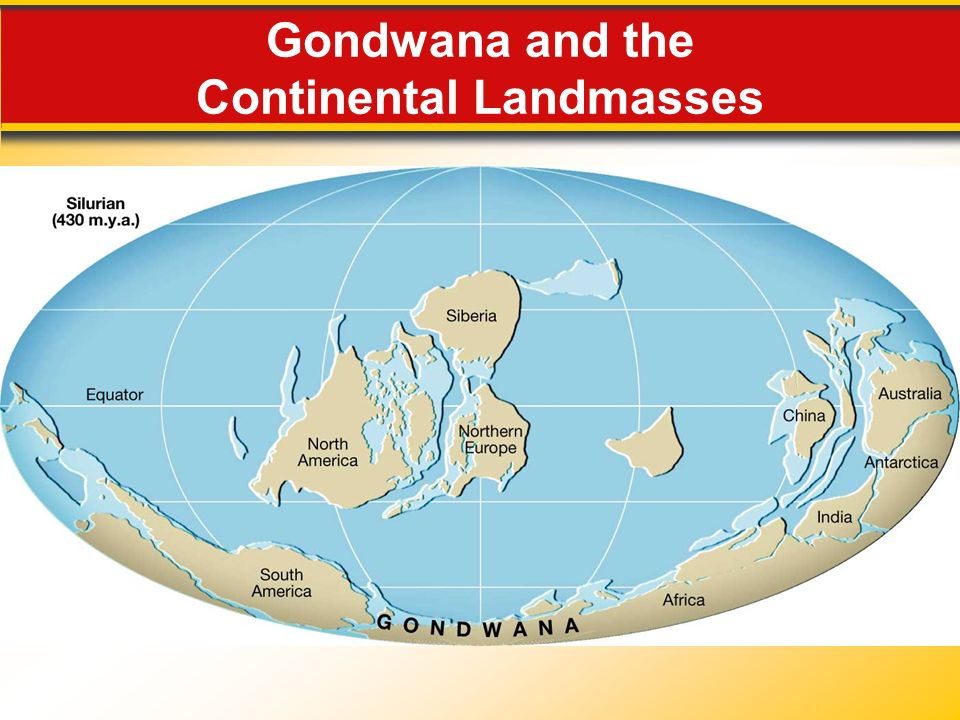 Gondwana and the Continental Landmasses