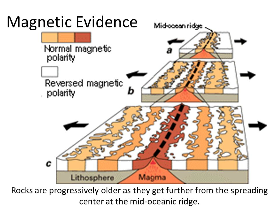 Magnetic Evidence Rocks are progressively older as they get further from the spreading center at the mid-oceanic ridge.