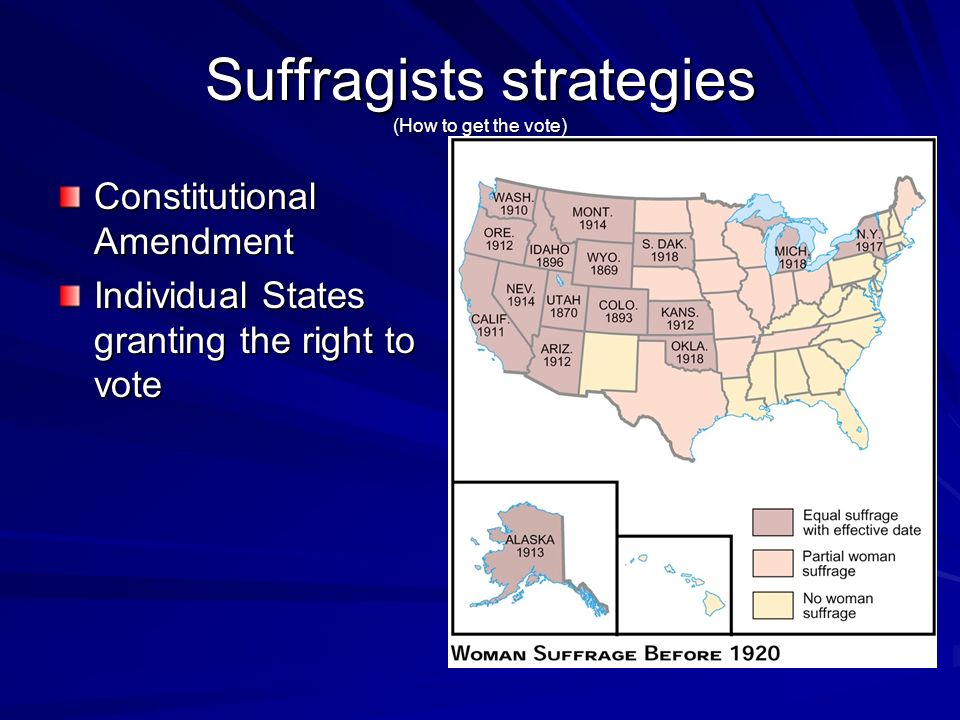 Suffragists strategies (How to get the vote)