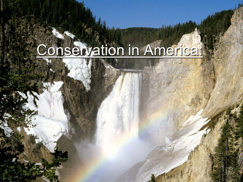 Conservation in America: