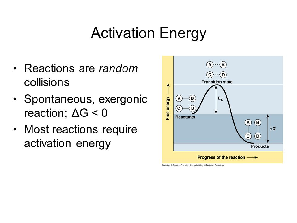 Activation Energy Reactions are random collisions