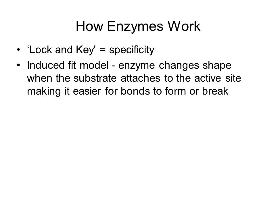 How Enzymes Work 'Lock and Key' = specificity