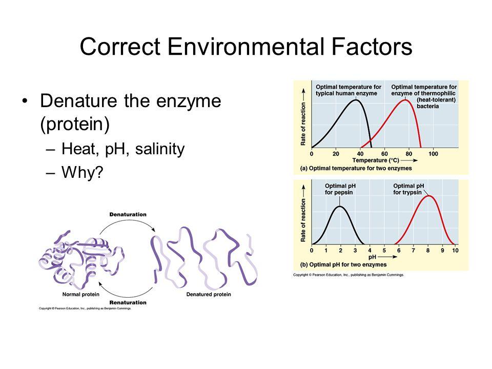 Correct Environmental Factors
