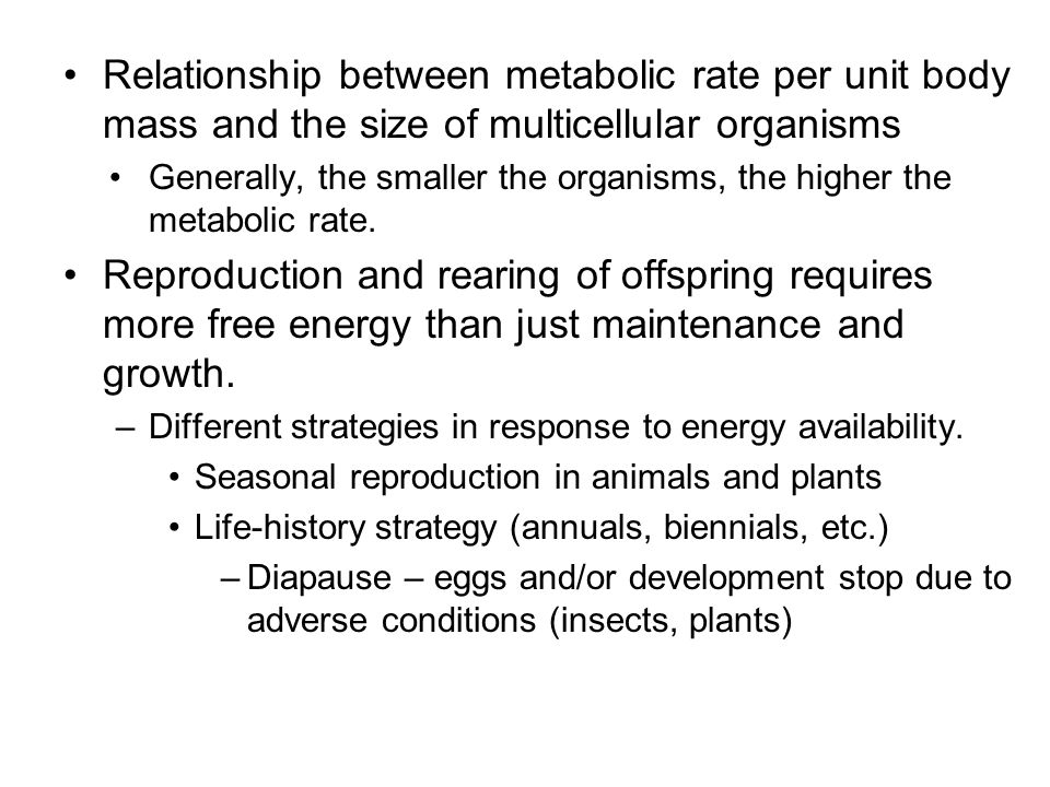 Relationship between metabolic rate per unit body mass and the size of multicellular organisms