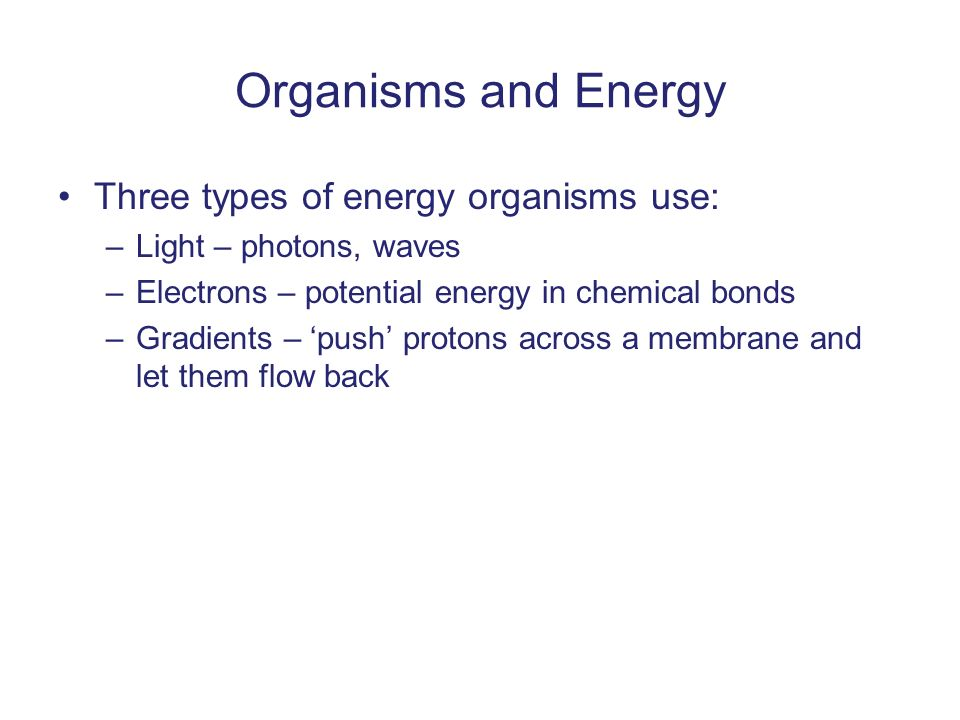 Organisms and Energy Three types of energy organisms use: