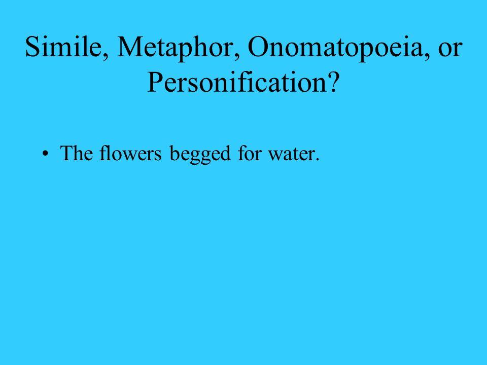 Simile, Metaphor, Onomatopoeia, or Personification