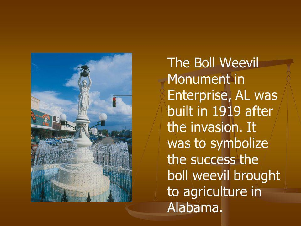 The Boll Weevil Monument in Enterprise, AL was built in 1919 after the invasion.