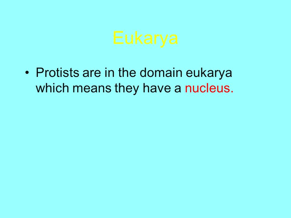 Eukarya Protists are in the domain eukarya which means they have a nucleus.