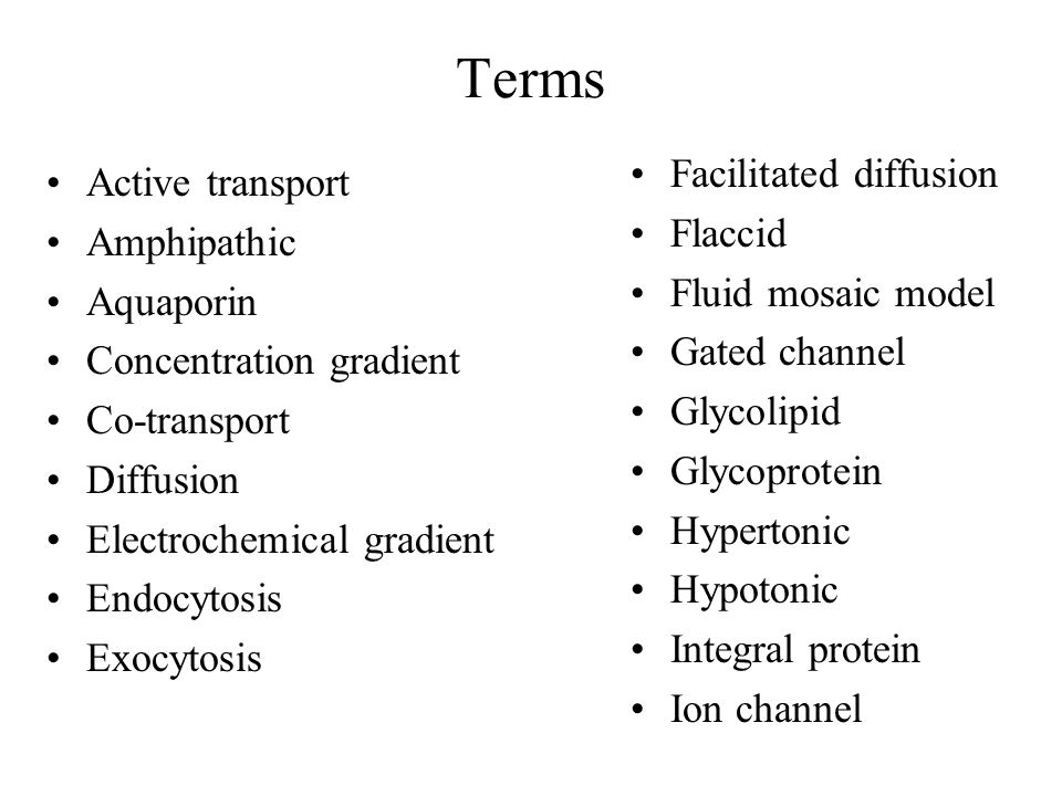 Terms Facilitated diffusion Active transport Flaccid Amphipathic