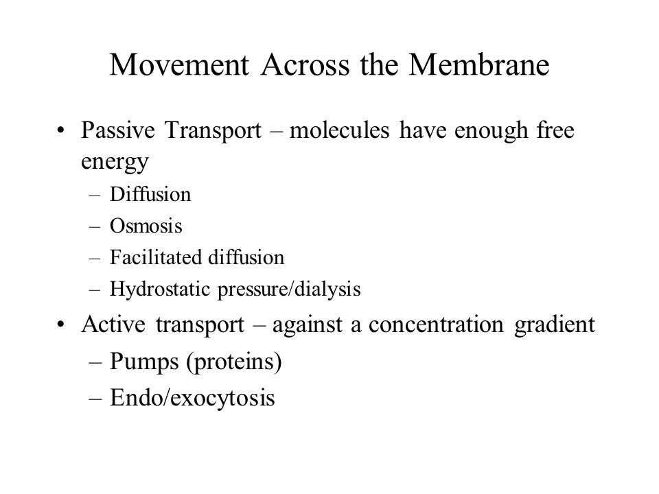 Movement Across the Membrane
