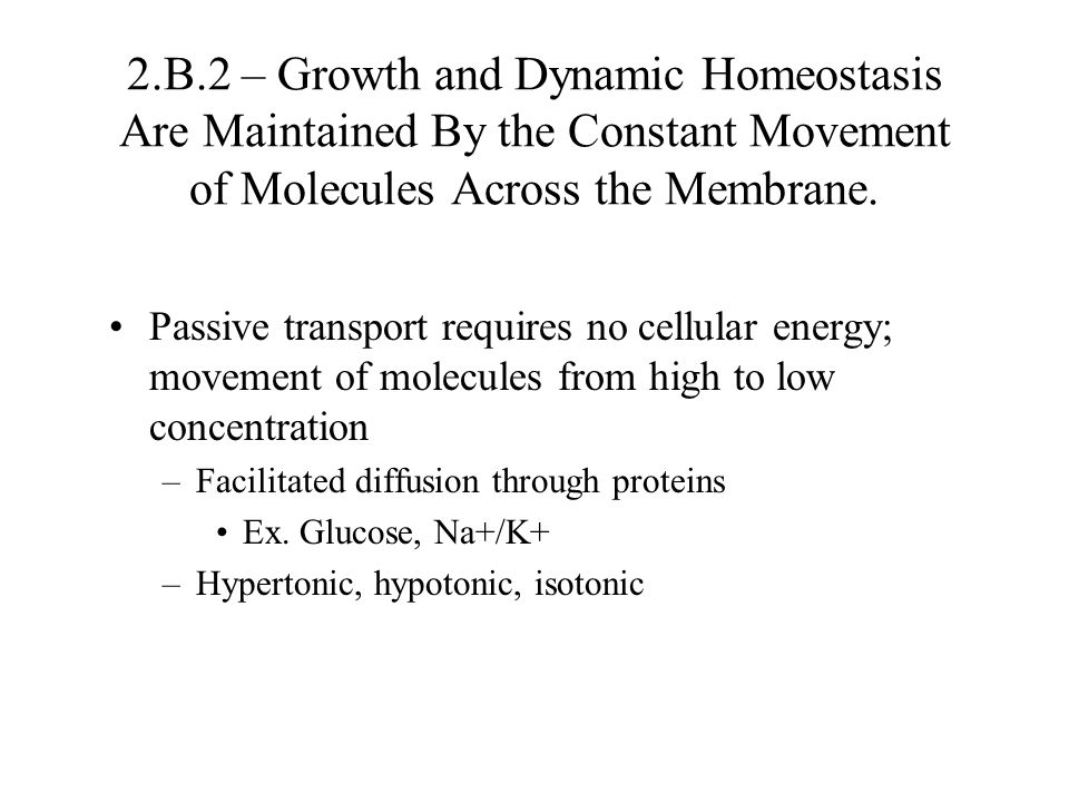 2.B.2 – Growth and Dynamic Homeostasis Are Maintained By the Constant Movement of Molecules Across the Membrane.