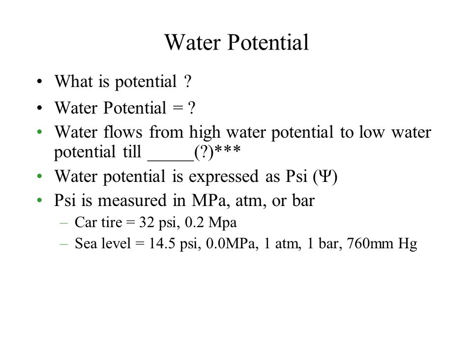 Water Potential What is potential Water Potential =