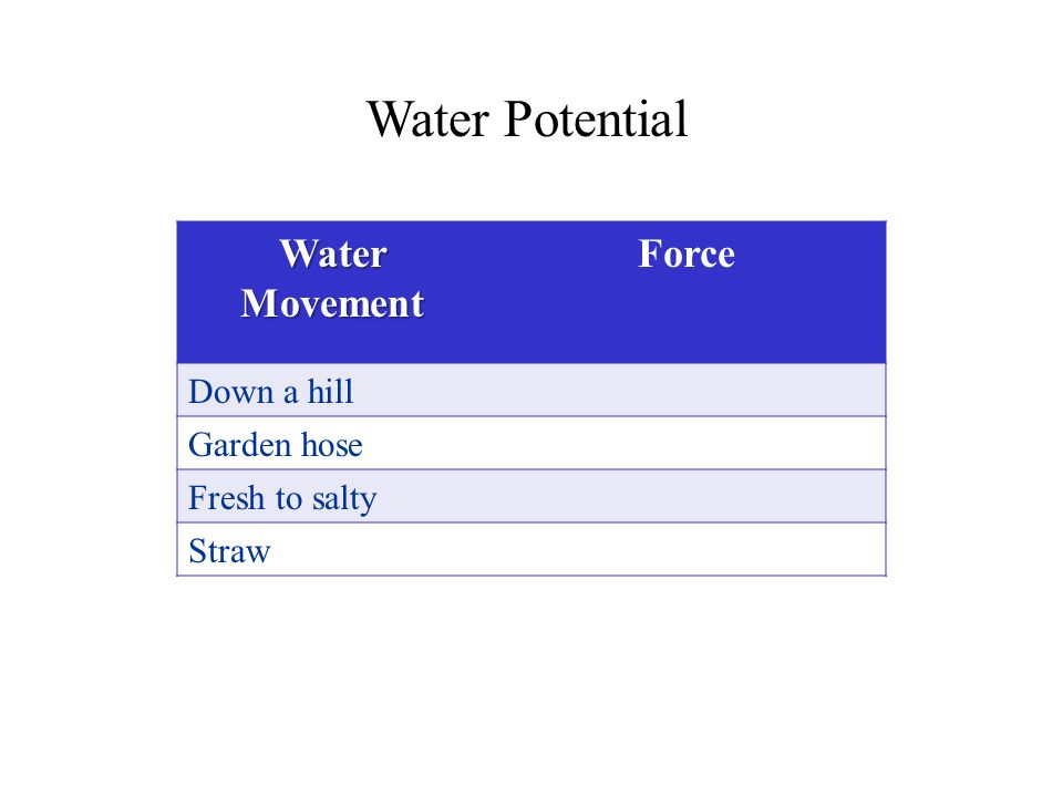 Water Potential Water Movement Force Down a hill Garden hose