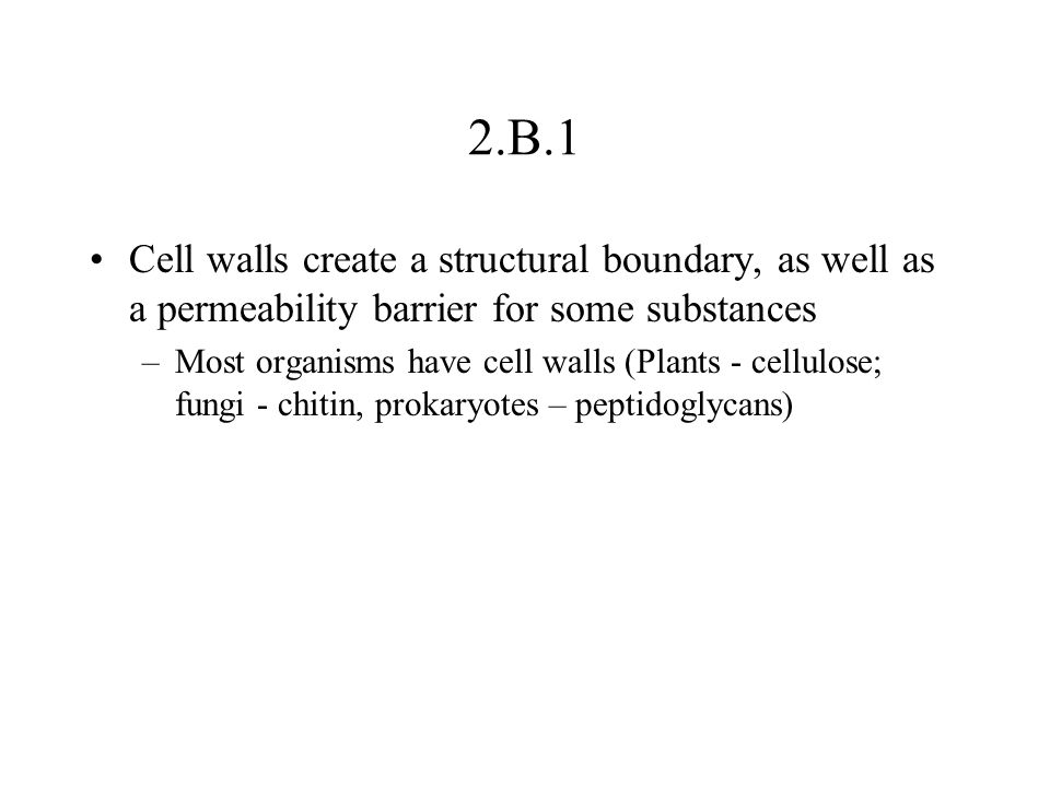 2.B.1 Cell walls create a structural boundary, as well as a permeability barrier for some substances.