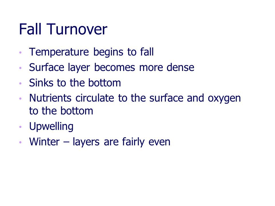 Fall Turnover Temperature begins to fall
