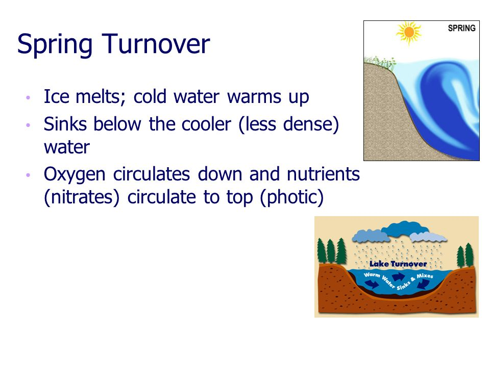 Spring Turnover Ice melts; cold water warms up
