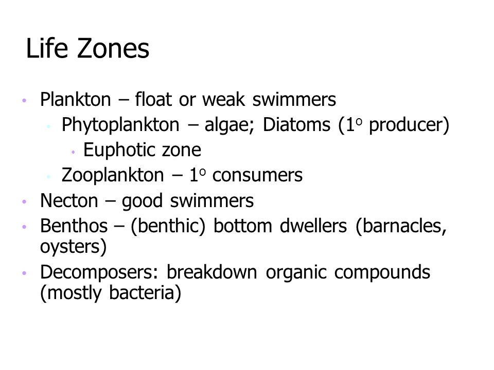 Life Zones Plankton – float or weak swimmers